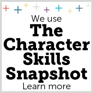 The character skills snapshot