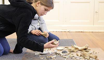 A Student Examining Bones